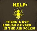 honey bee back